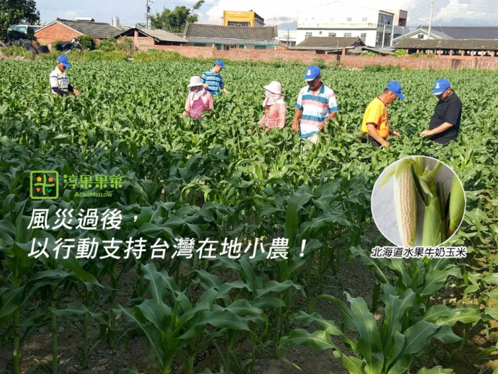 風災過後,以行動支持台灣在地小農!(北海道水果牛奶玉米)
