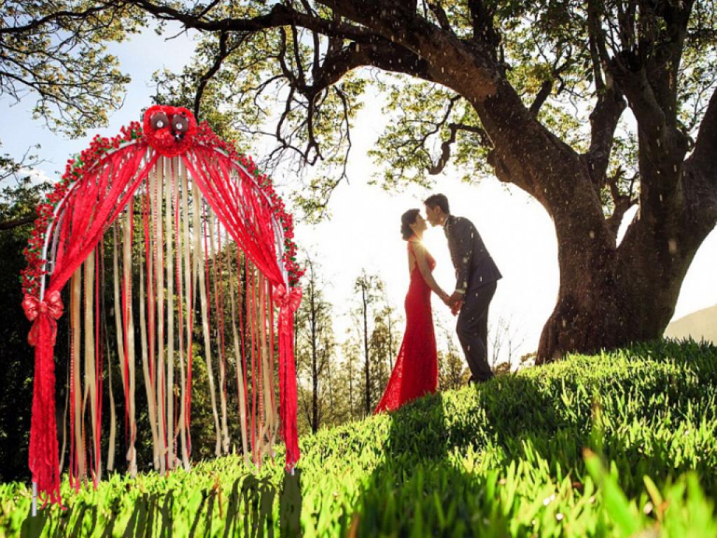 我們結婚吧--緞帶婚禮拱門與婚禮小物
