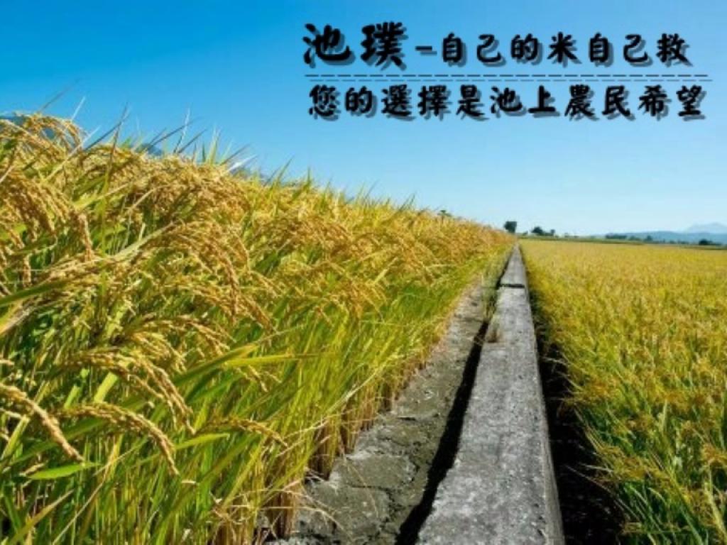 池璞-自己的米自己救