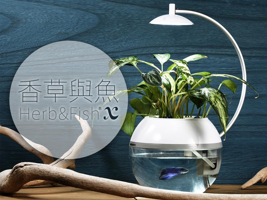 香草與魚Herb&Fish®X|共生‧永續 桌上迷你生態星球