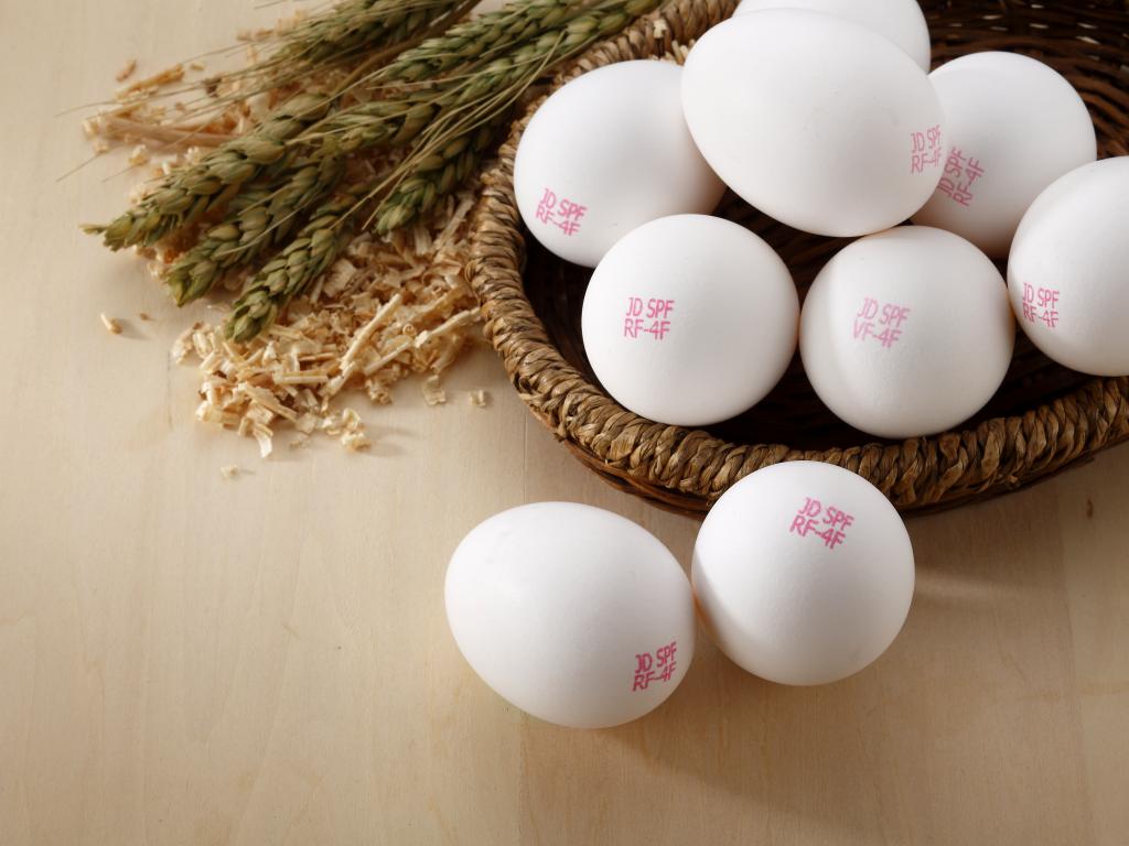 地球上最乾淨的一顆蛋