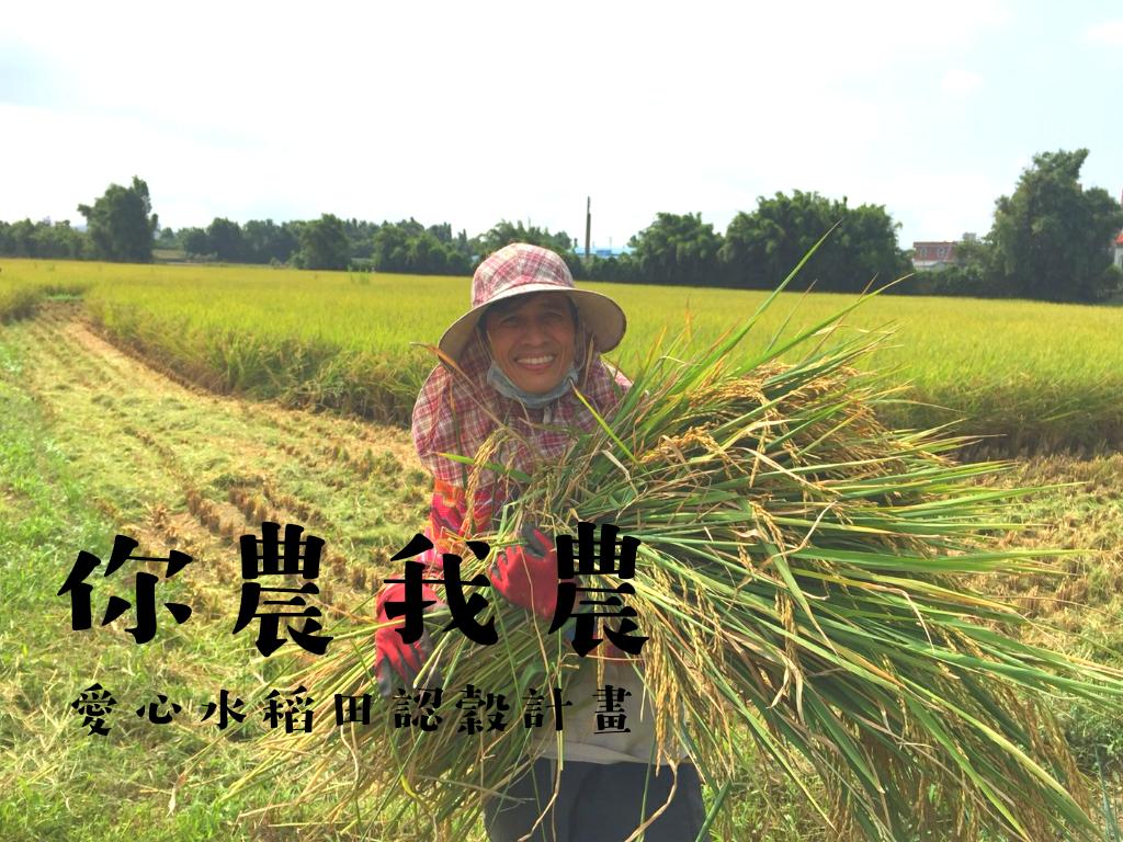【Yoga Farm 快樂農場】你農我農│愛心水稻田認穀計畫