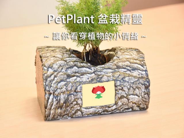 PetPlant盆栽精靈。互動式植物照護裝置