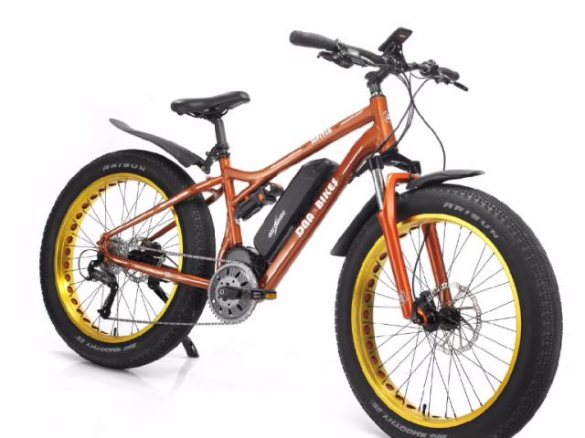 dnabikes 新一代全地形電動助力自行車|陪你到天涯海角