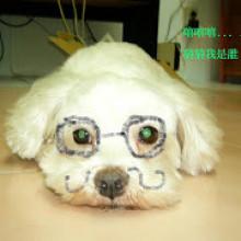 Yifang Lu
